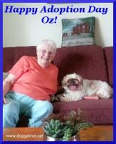 OZ ♥ Rescued Apr 2015 Found Dream Home July 2015