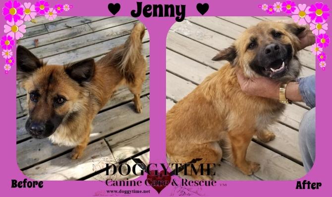 FB Jenny before & after Nov 2018