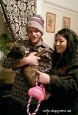 SOPHIE ♥ Rescued Dec 2014 Adopted Feb 2015
